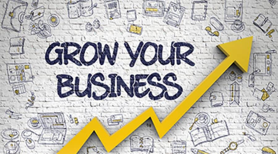 Growing your full-time indie publishing business